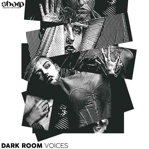 سمپل وکال Function Loops Dark Room Voices