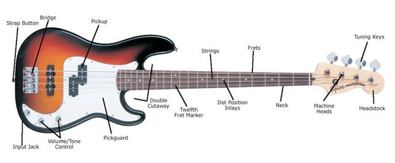 اجزاء گیتار بیس