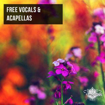 وکال خام Ghosthack Vocal & Acapellas
